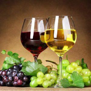 Vinske sorte loznih kalemova
